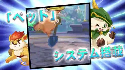 光と闇の対決〜Fight Song〜 ペットシステム